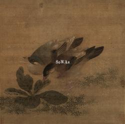 戴進(伝)「雙禽啄松図」掛軸